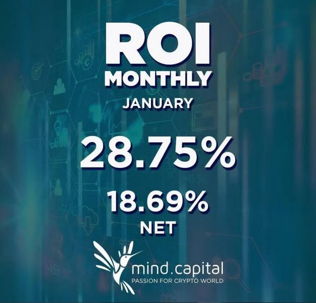 ROI Janvier Mind Capital Mind Capital En Quelques Explications